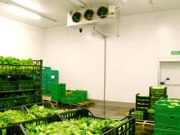 Холодильные склады - фото 3