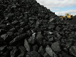 Кокс, уголь, медный концентрат из Казахстана на экспорт - фото 3