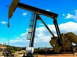 Нефть из Ирана - фото 1