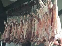 Оптом Мясо Баранина Говядина Свинина. - фото 2