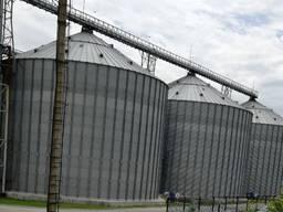 Продаем горох 2500 тонн, урожай 2020 года.