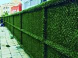Зелёный Забор - photo 3